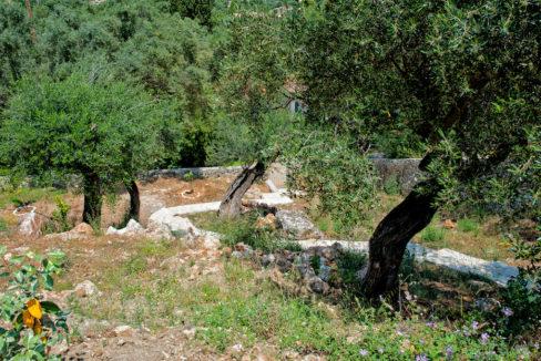 villa2be-villa-barbati-view-37